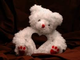 valentine s teddy bear wallpaper valentines day holidays