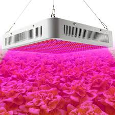 Portable Greenhouse With Grow Lights Full Spectrum 800w Led Grow Lights 800 Smd5630 Led Plant Lamp For Greenhouse Hydroponic Vegetables Grow Flowering