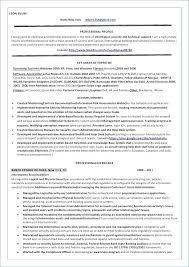 Information System Officer Resume Manager Resume Examples Sample For