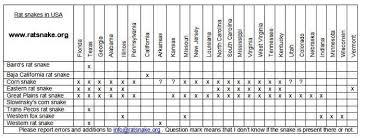 Corn Snake Weight Chart Corn Snake Feeding Chart By Age