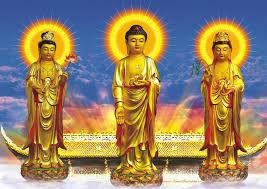 Image result for amitabha buddha pure land