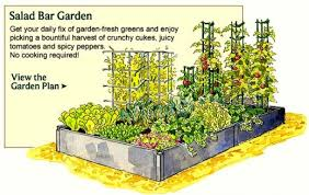 Small Picture Vegetable Garden Design Ideas Design Ideas