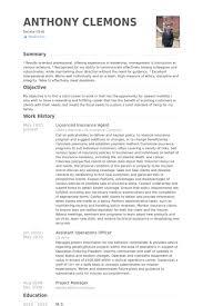 Insurance Professional Resume Sample Fresh Insurance Agent Resume