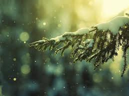 christmas snow hd. Simple Christmas Christmas Snow Pictures HD Wallpapers These Wallpaper Backgrounds Are Free  To Download And Available In High Definition For Your Desktop Pc Laptops With Hd S