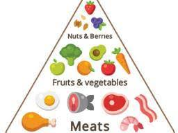 Caveman Diet Chart Paleo Diet A Guide And 7 Day Meal Plan