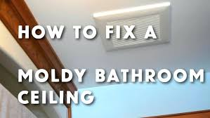 how to get rid of mold on walls in bedroom medium size of of mould on how to get rid of mold on walls