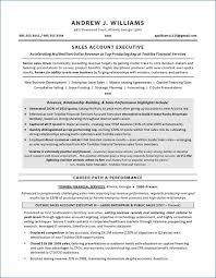 Resume Services Atlanta Resume