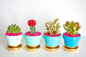 1gold dipped plant pots1