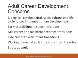 Career Counseling A Holistic Approach Chapter 14 Career