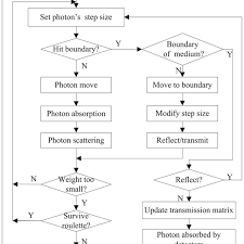 Flow Chart Of The Monte Carlo Simulation Of Light