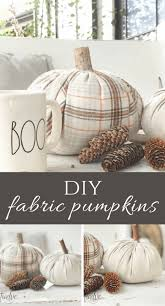 i know we have all seen those lovely velvet pumpkins at the and i am almost as sure that you have seen a diy tutorial or two on how to make