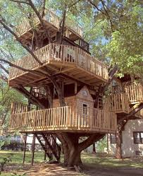 unusual but interesting tree houses 9 home design garden with regard to best trees for plan 8 cool tree houses to build o75 houses
