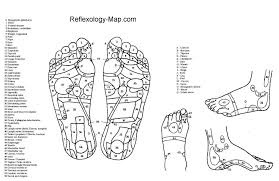 The Foot Reflexology Map In Pdf File Foot Chart Foot