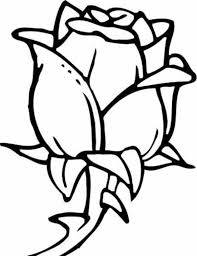 Small Picture Rose Flower for Beautiful Lady Coloring Page Rose Flower for