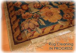 our health clean rug cleaning system