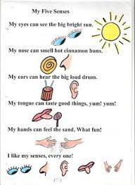 my five senses and popcorn preschool observation mini book  4 my five senses