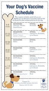 63 5 Way Puppy Vaccine Schedule