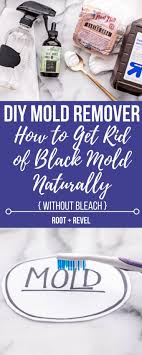 wondering how to get rid of mold naturally whether you have black mold in your