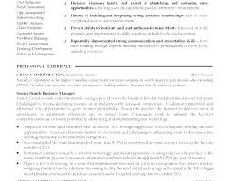 Resume Executive Summary Examples New Sample Resume Professional Overview Examples Plus Sample Resume