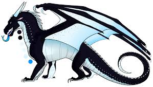 whiteout is a female nightwing icewing hybrid with black scales with hints of dark sapphire