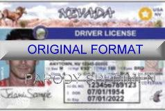 Bigismash Make Online Free - Drivers A Fake License