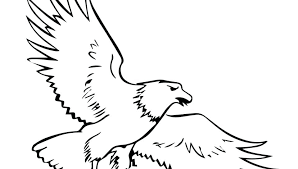 Coloring Pages Bald Eagle And Us Flag Great Coloring Page In Nest