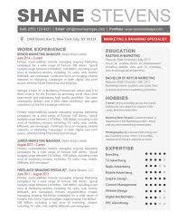 Resume Template Examples Of Modern Contemporary Sample With