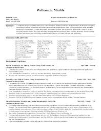 Example Of Resume 3 Cv How To Write A Technical Su Peppapp