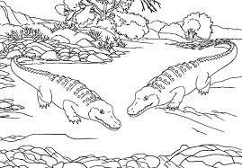 Bekijk onze zoo coloring pages selectie voor de allerbeste unieke of custom handgemaakte items uit onze shops. Zoo Animals Coloring Pages Best Coloring Pages For Kids