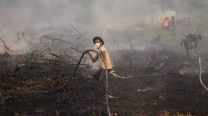 Alat dan bahan untuk menyulam. Kebakaran Hutan Dan Lahan Kian Meluas Dan Kabut Asap Semakin Parah Bnpb Kewalahan Padamkan Api Bbc News Indonesia