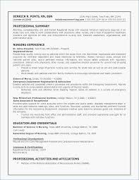 Fashion Resume Examples Unique Resume Other Skills Examples Enchanting Fashion Resume Examples