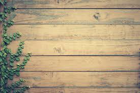 vine on brown wooden pallet board hd wallpaper