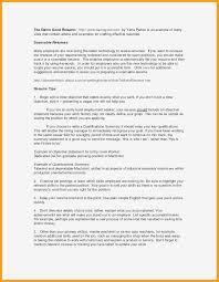 Job Application Portfolio Example 10 Portfolio Formats Examples Resume Letter