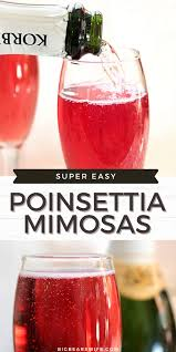 poinsettia mimosas big bear s wife