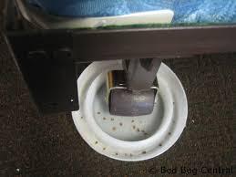 blackout bed bug detector under bed leg