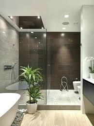 contemporary bathroom colors. Contemporary Bathroom Colors And Designs Beige Adds Chic Simplicity To A Homes