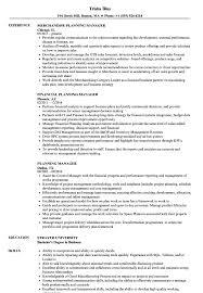 Sample Zoning Supervisor Resume Planning Manager Resume Samples Velvet Jobs