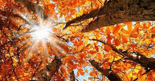 Fall Equinox – Autumnal Equinox