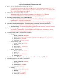 photosynthesis cellular respiration study guide what is atp and photosynthesis worksheet doc ce c a f e b