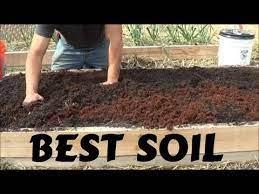 best soil for rasied garden bed you