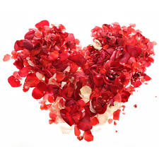 500 000 valentine s day hotel package at sutton place hotels