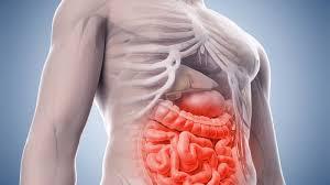 Darmentzündung - Ursachen, Symptome und Behandlung