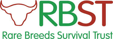 Image result for rbst in uk