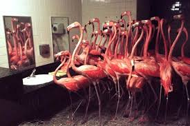 flamingos in bathroom about bright pink flamingos huddle together between the sinkirrors and bathroom flamingos in bathroom