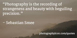 Quotes About Photography And Beauty Best Of 24 Incredible Photography Quotes Icon Photography School