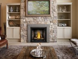 fireplace amazing napoleon gas fireplace design decorating unique on home interior ideas amazing napoleon gas