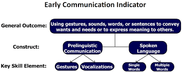 Key Skills Meaning Early Communication Indicator Igdi