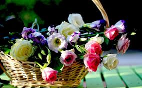 flowers basket wallpapers hd pictures one hd wallpaper pictures backgrounds free