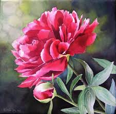 beautiful paintings of flowers 0241 olympus digital