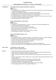 Resume Sample For Human Resource Position Boeing Resume Samples Velvet Jobs 59